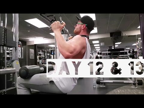 MAKING GAINS DAY 12 & 13   YOUTUBE EDITING, TRICEPS & BACK, BULK PROTEIN