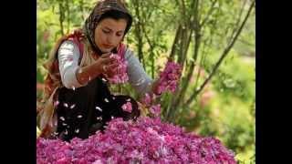 Iranian Gilaki Song- Aha Bogoo