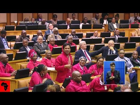 Drama Between EFF And FF Plus In Parliament