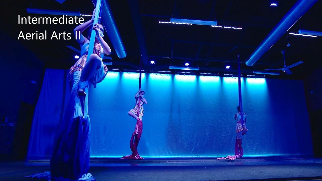Aerial Arts at Dance Fusion Performing Arts Studio