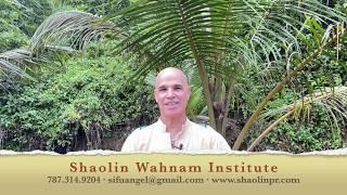 Taijiquan | Cultivating Spirit, Training Energy | Grandmaster Wong Kiew Kit
