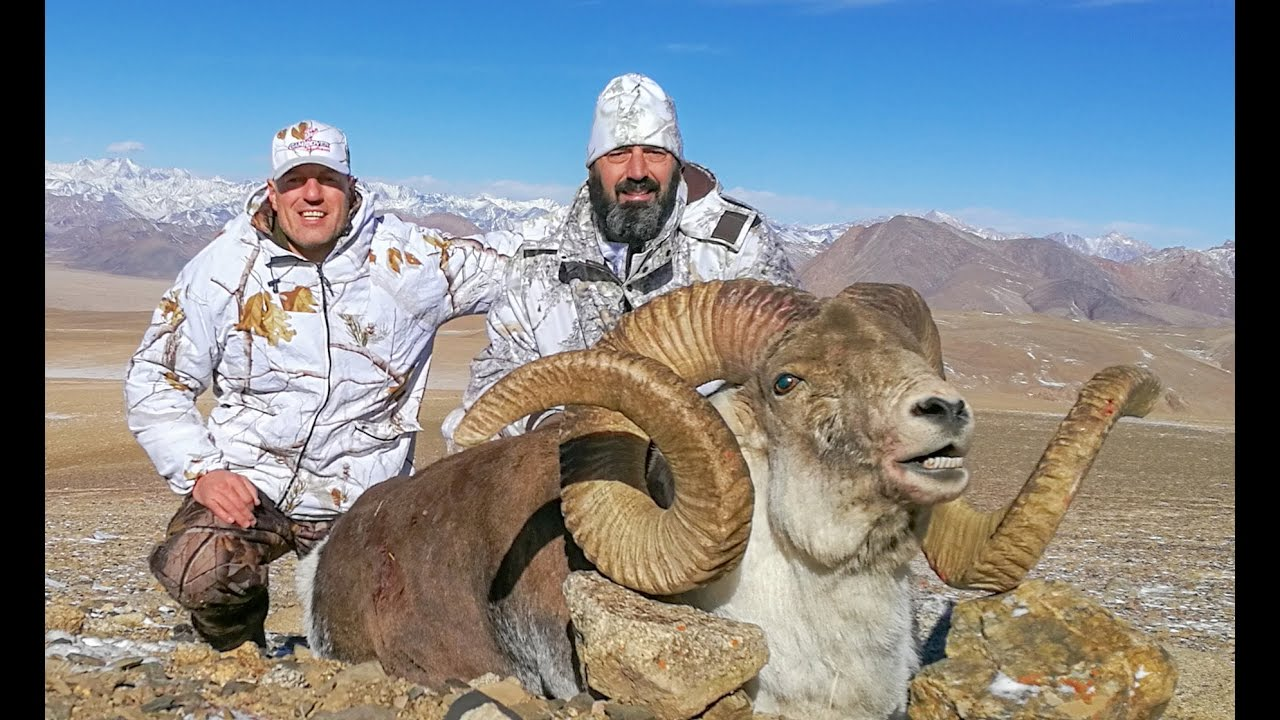 hunting for marco polo sheep and pamir ibex tajikistan youtube. Black Bedroom Furniture Sets. Home Design Ideas
