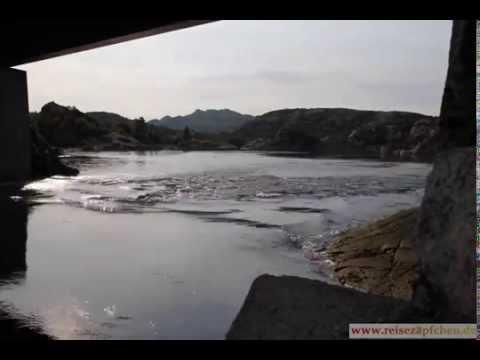 Vikna Hasfjord