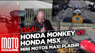Honda Monkey VS Honda MSX - mini motos, maxi plaisir