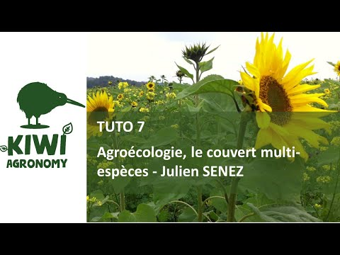 Julien SENEZ : Agroécologie, le couvert multi-espèces