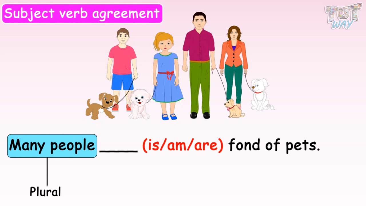 hight resolution of Subject-Verb Agreement Basics   English   Grade-3