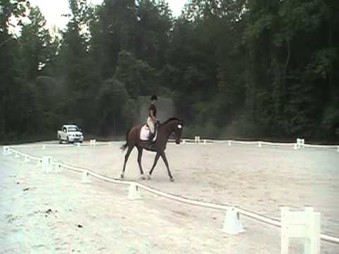 windridge schooling HT 2011 001
