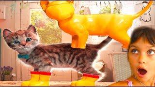 ПРИКЛЮЧЕНИЕ МАЛЕНЬКОГО КОТЕНКА Little kitten мультфильм для детей про котенка Детская игра Валеришка