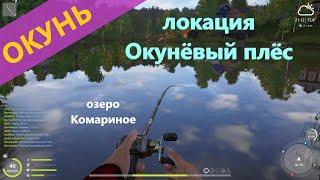 Русская рыбалка 4 озеро Комариное Окунь во вполне ожидаемой локации