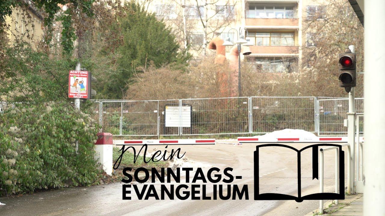 Mein Sonntagsevangelium: Das Reich Gottes ist nahe