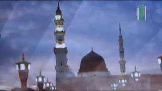 طهارتها من الشرك والايمان يأزر اليها - المدينة خير لهم - مجدي إمام - ح. 14