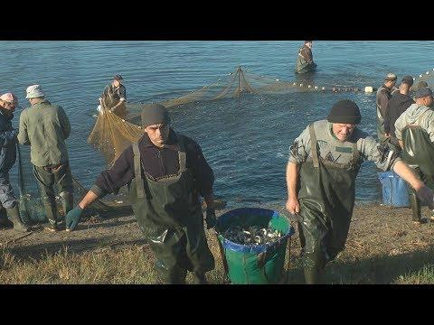 Тема дня: Охорона і примноження рибних ресурсів