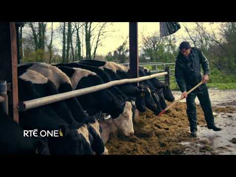 Brexit: Farming On The Edge | RTÉ One | Monday 15th January 9.35pm