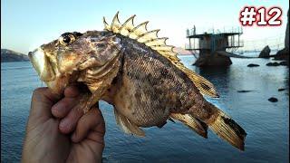 ЩО ТИ ТАКЕ?! ВЕЛИЧЕЗНИЙ МОРСЬКИЙ ЙОРЖ(СКОРПЕНА) Хитрий спосіб лову скорпены! Нічна Рибалка в Криму