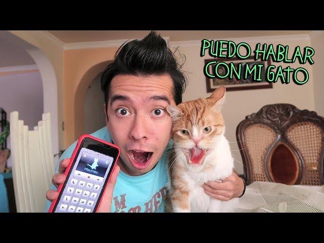Hablo con mi Gato por una APP del Celular y Me Muerde los Brazos - VLOG #79