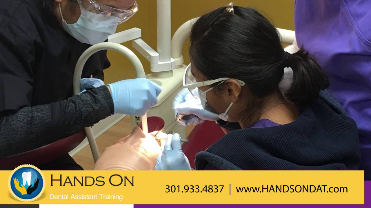 hands on dental assistant training specialty schools in hands on dental assistant training specialty schools in rockville