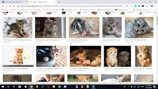 Google Sites: Working with the Banner