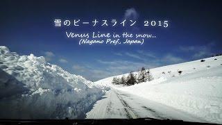 Venus Line in the snow / 雪のビーナスライン2015