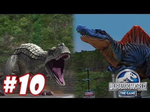 Gogosaurus vs Spinosaurus : Trò chơi nuôi khủng long đánh nhau - Jurassic World The Game #8