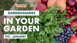Gardening in January | Victoria | Bunnings Garden Diary