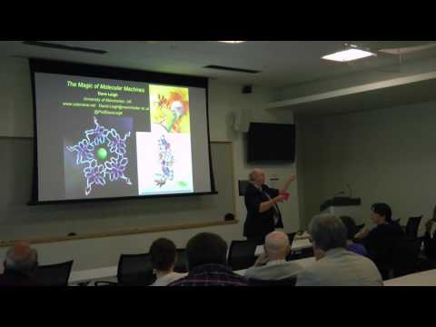 David Leigh: The Magic of Molecular Machines