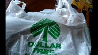 Dollar Tree Haul #15 most items for DIY Organizer Project :) Thumbnail