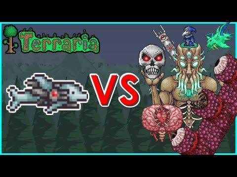 Terraria - S.D.M.G. vs Bosses | Biron