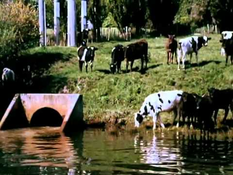 The Water Cycle - Documentary with young Sam Neill