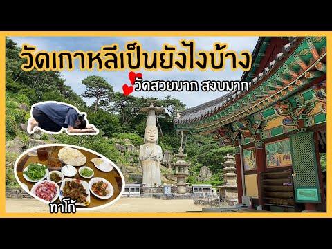 [Vlog]🚗ไปเที่ยวต่างจังหวัดเกาหลี (เมืองนนซาน)