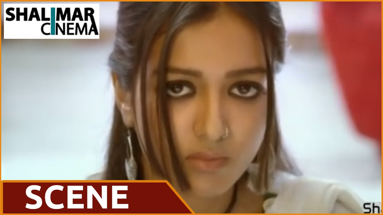 Paisa Movie || Sidhika Sharma & Catherin Funny Comedy Scene || Nani
