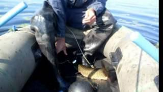 Лучшая летняя рыбалка в сибири