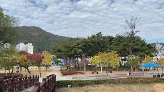 순천조례호수공원, 단풍구경,단풍여행, 순천여행,국내여행…