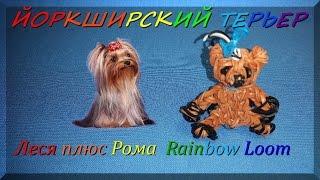 Как плести из резинок Rainbow Loom Bands собачку Йоркширский терьер