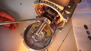 Cấu Tạo Động Cơ 1 Pha, Motor 1 Pha, MINHMOTOR, 0901460163