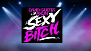 Sexy bitch instrumental