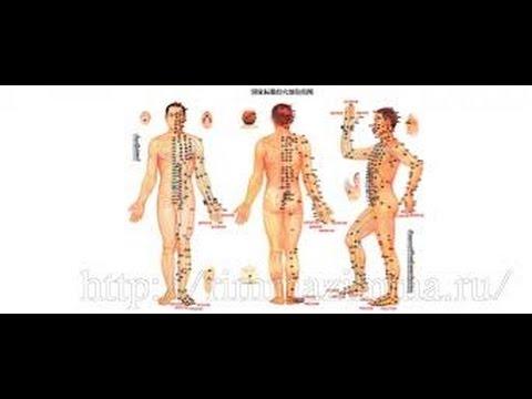 Какие точки на теле нажать чтобы хорошо стоял