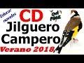 Canto del jilguero CD campero verano 2018 para educar reclamos noveles