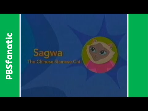 PBS Kids Pinball: Sagwa the Chinese Siamese Cat (2002)