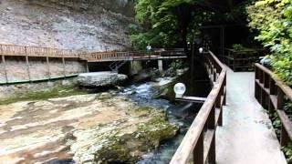 видео Гегский водопад, Абхазия: описание, фото, где находится на карте, как добраться