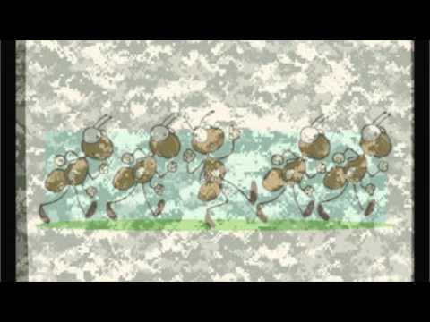 05  March of the Army Ants