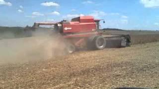 colheita de soja case ih 2388