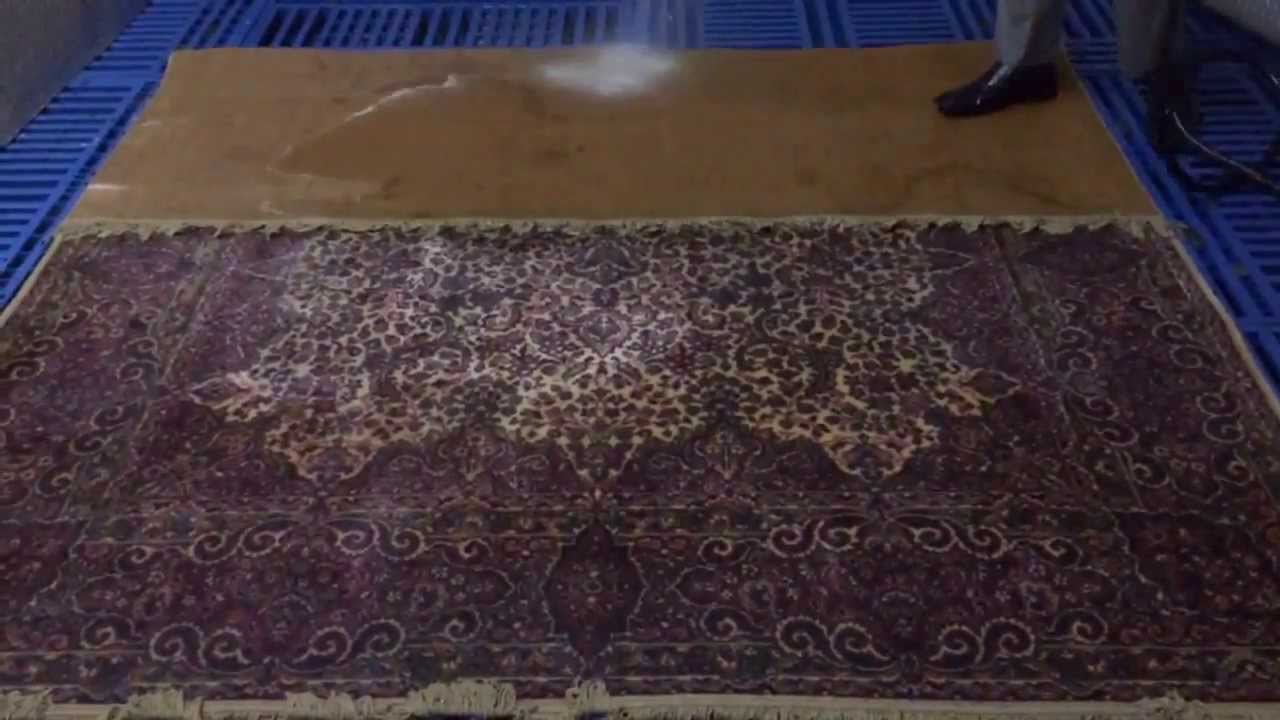 How To Clean Pet Urine From Wool Carpet Www