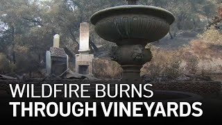Glass Fire Leaves Trail of Devastation in Wine Country