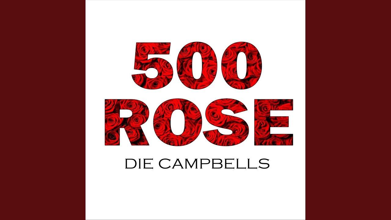 Download 500 Rose