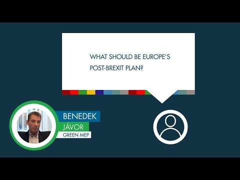 Benedek Jávor responds to a question on Europe's post-Brexit plan
