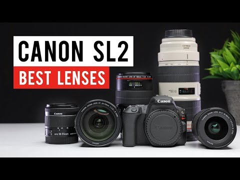 Canon SL2 (200d) Best Lenses