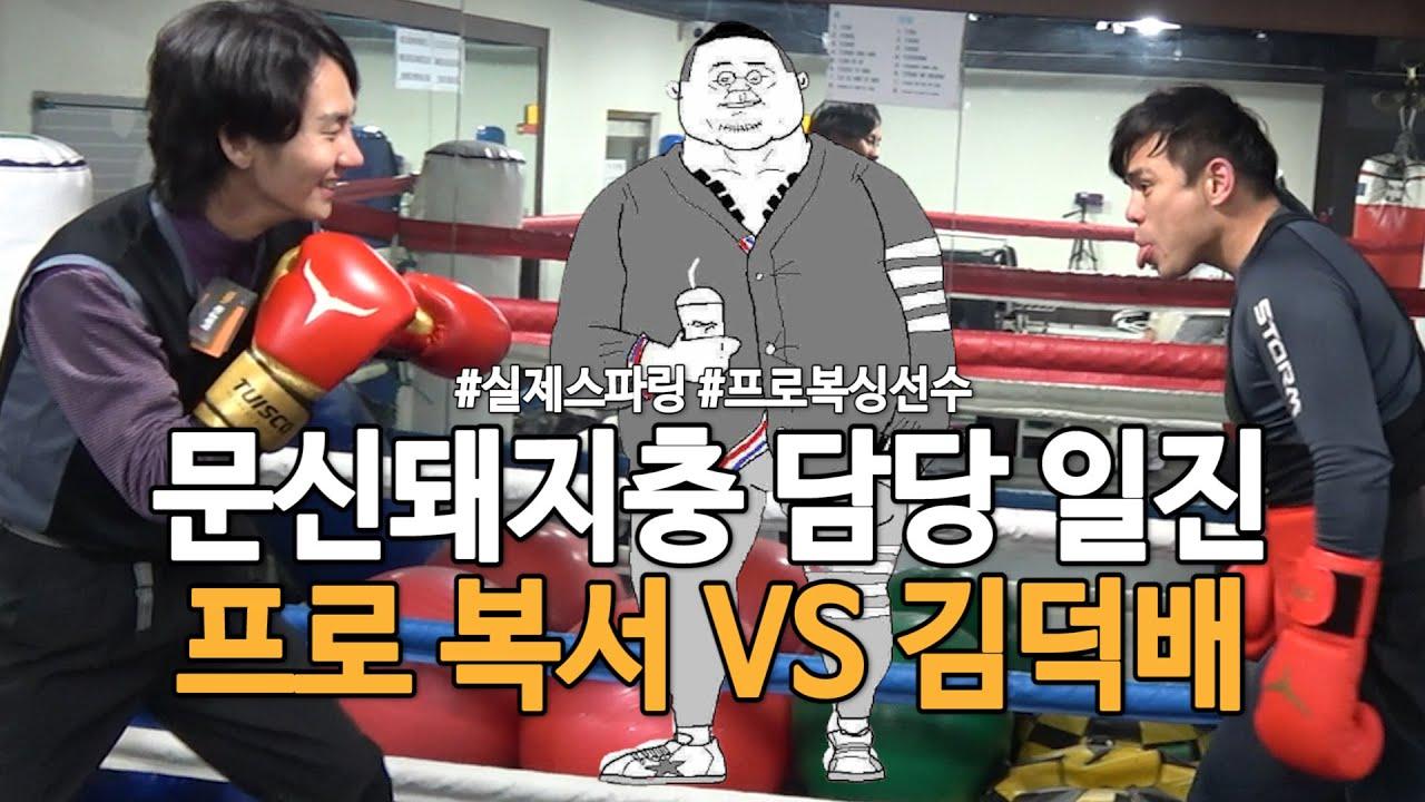 동네 양아치 문신돼지국밥충 담당 일진ㅣ복싱바이러스2 [김덕배 이야기]