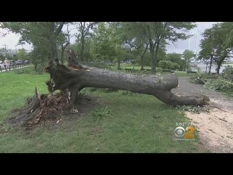 Rare Tornado Touches Down In College Point, Queens