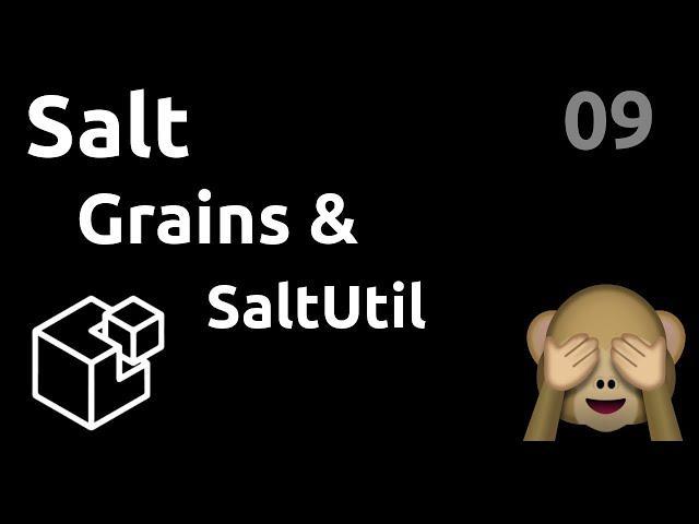 Grains et Saltutil : custom et script python