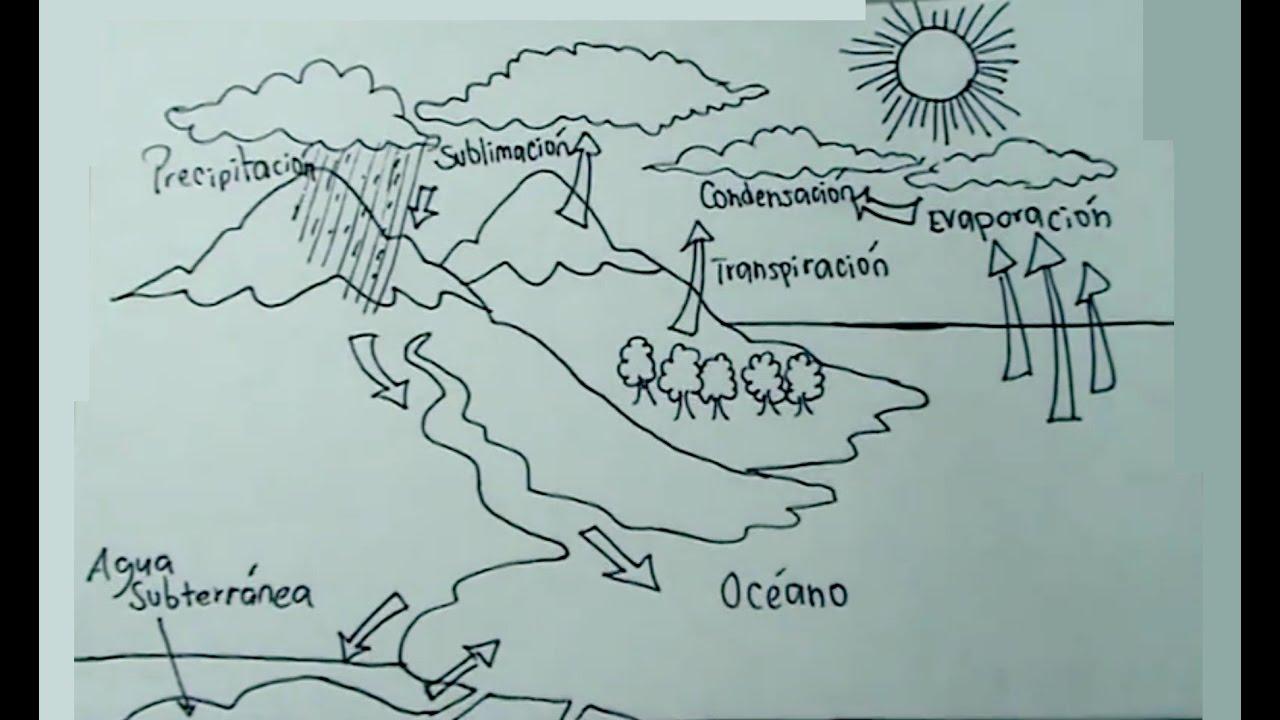 Ciencias Naturales 15 Cómo Dibujar El Ciclo Del Agua Paso A Paso